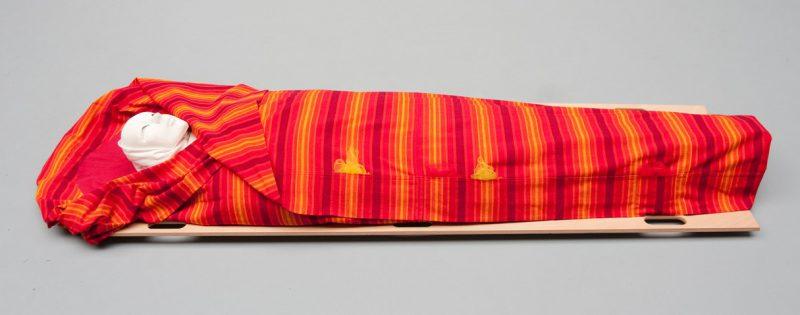 Lijkwade Oranje streep Guatamala